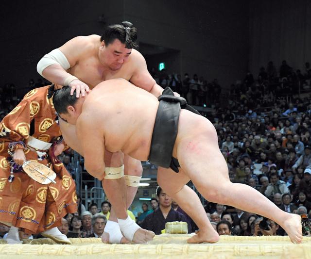 harumafuji-goeido
