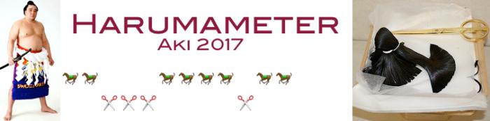 harumameter-day-12