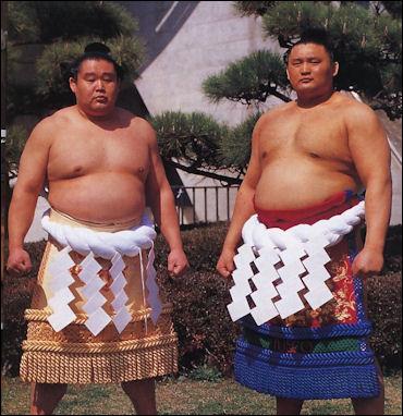 Takanohana Wakanohana